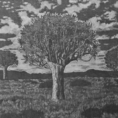 Kokerboom Forest: charcoal on cotton linen