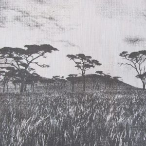 Veld: charcoal on natural